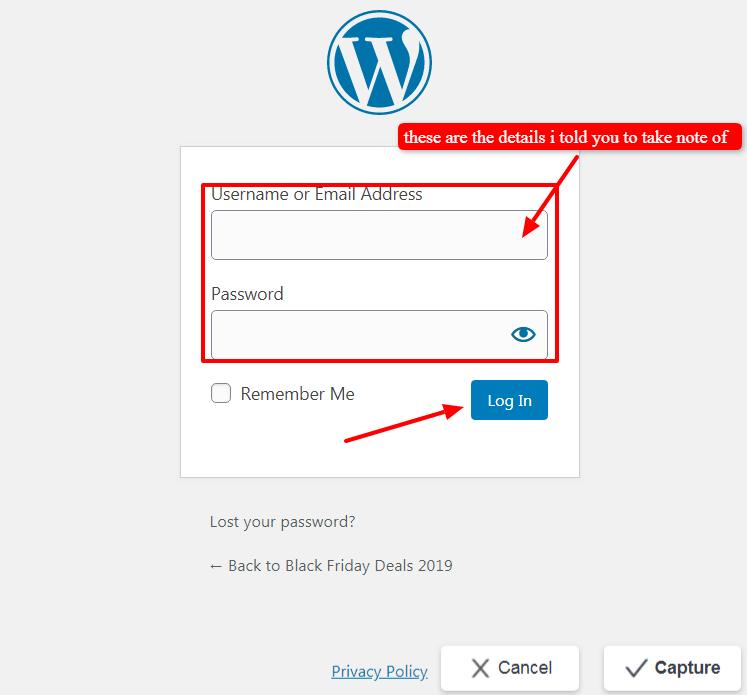 logging-in-wordpress